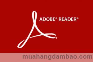 Mở file Pdf bằng phần mềm Adobe Reade