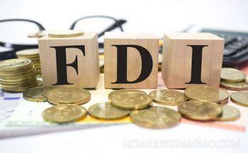 Tìm hiểu về FDI và các công ty FDI là gì?