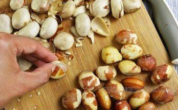 Hạt mít là loại hạt mang đến nhiều lợi ích sức khỏe đáng ngạc nhiên