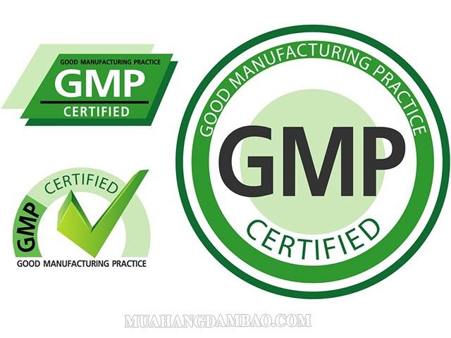 GMP Who là gì?