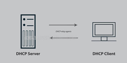 DHCP Sever - Client