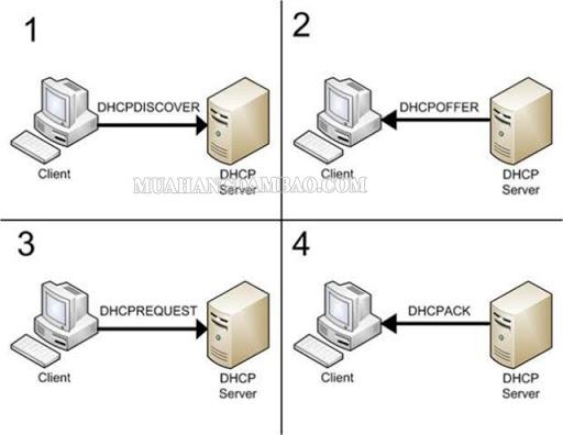 DHCP giúp thiết lập IP tự động