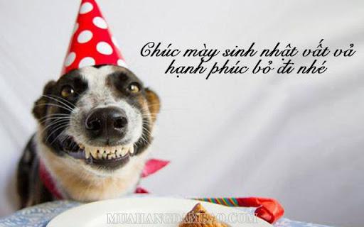 Lời chúc sinh nhật bạn thân bá đạo