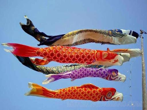 Hình ảnh cờ cá chép trong ngày tết Đoan ngọ của Nhật
