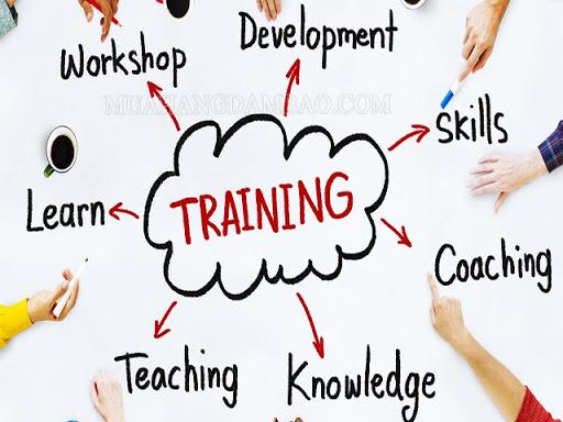 Training nghĩa là gì?
