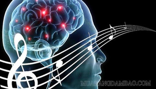 âm nhạc tăng sự tập trung, kích thích não ghi nhớ nhanh gấp 20 lần bình thường