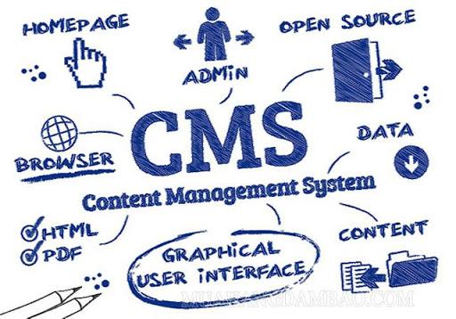 CMS hoạt động như thế nào?