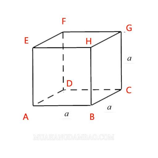 Vẽ hình lập phương ABCDEFGH
