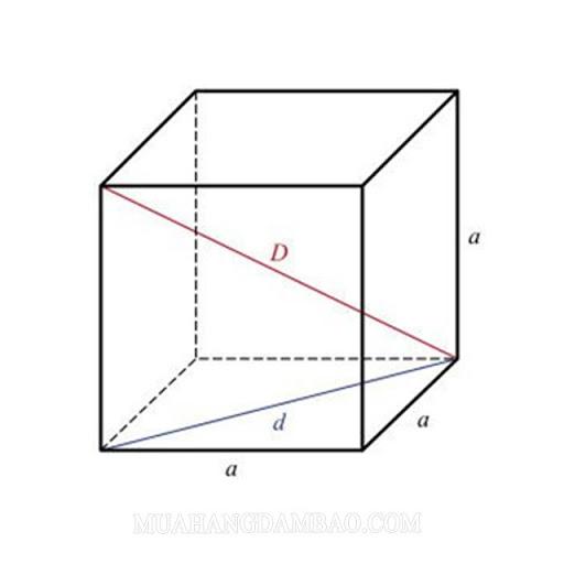 Đường chéo của hình lập phương