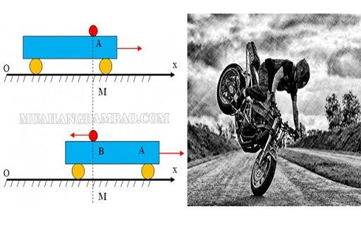 Đặc điểm của lực quán tính là gì?