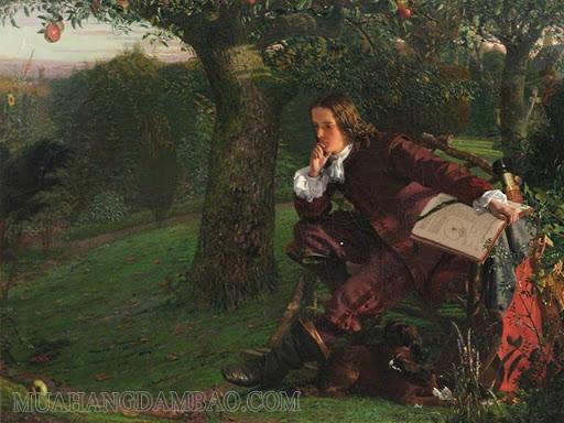 Tranh vẽ nhà khoa học Newton ngồi dưới gốc cây táo.