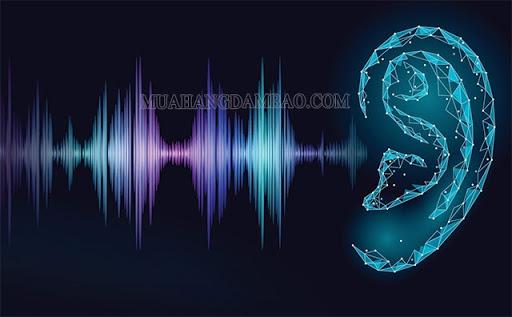 Ngưỡng cường độ âm thanh của tai người là dưới 125 dB