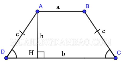 Hình thang cân là gì?