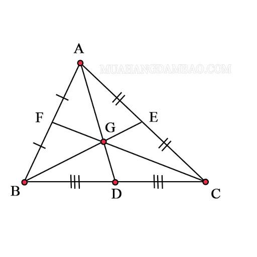 3 đường trung tuyến của tam giác
