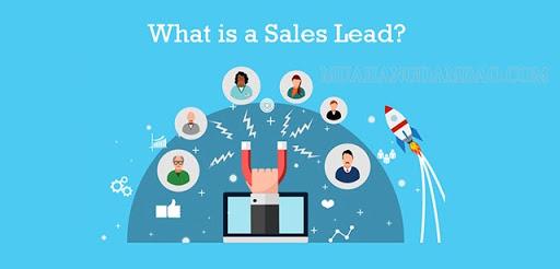 Sale leader là gì?