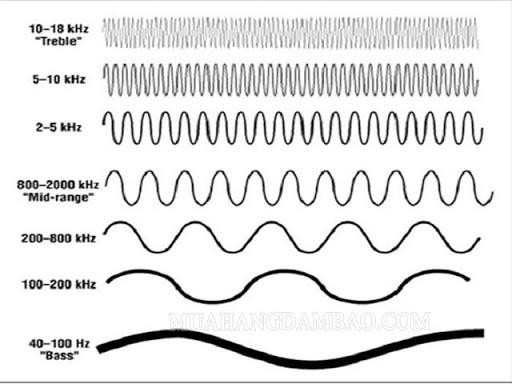 Các tần số âm thanh khác nhau.
