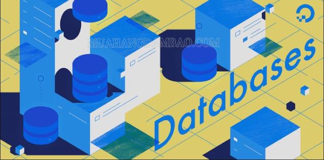 Database là gì? Tổng hợp các thông tin chi tiết
