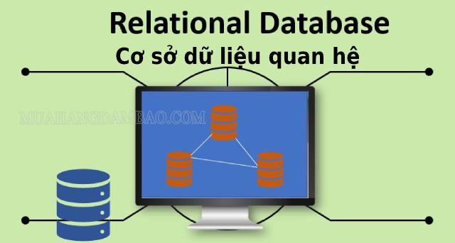 Cơ sở dữ liệu quan hệ là gì?