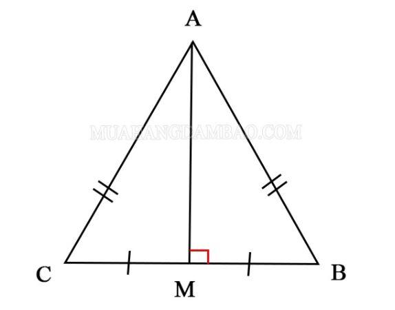 Đường trung trực đồng thời là trung tuyến trong tam giác cân