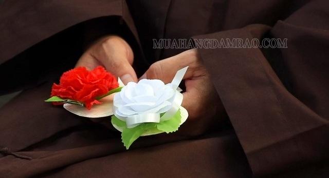 Bông hồng cài áo tượng trưng tấm lòng con cái với cha mẹ