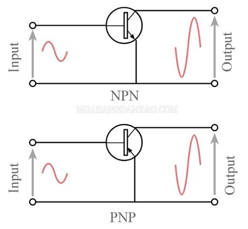 Cách mắc transistor kiểu E chung