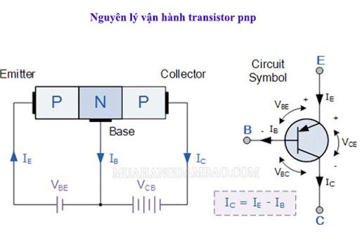 Nguyên lý hoạt động của transistor PNP