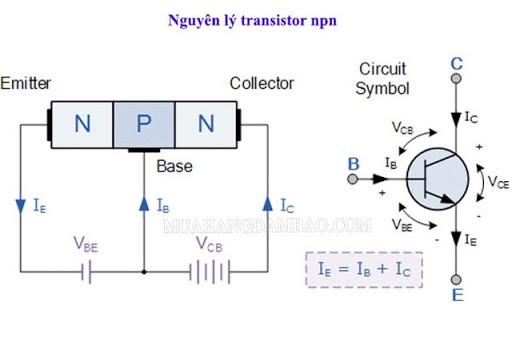 Nguyên lý hoạt động của transistor NPN