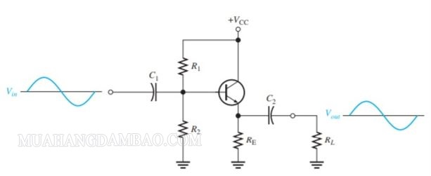 Cách mắc transistor kiểu C chung