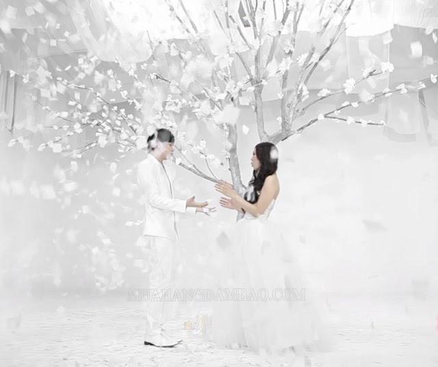 Màu trắng gắn liền với tình yêu trong sáng