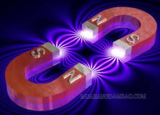Từ trường đều giữa 2 cực của nam châm hình chữ U