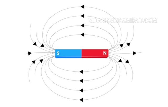 Từ trường bao quanh các hạt có điện tích chuyển động