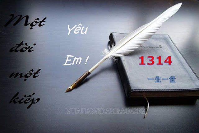 1314 có nghĩa là Trọn đời trọn kiếp