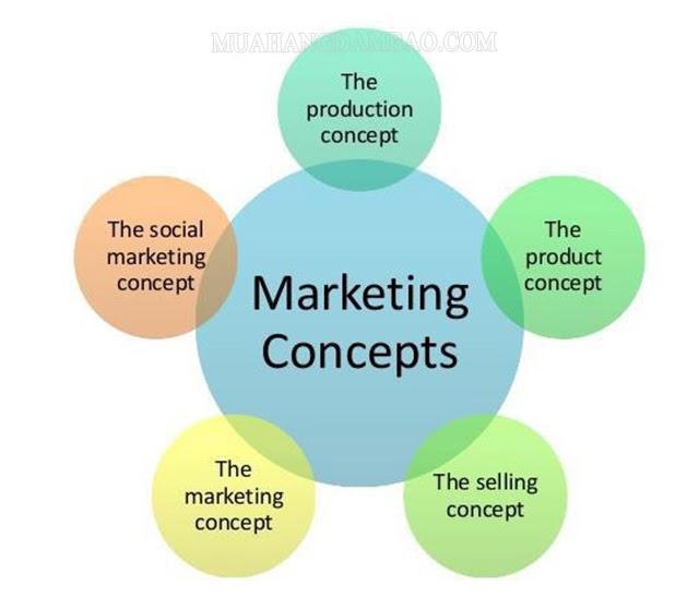 Các concept trong chiến dịch Marketing