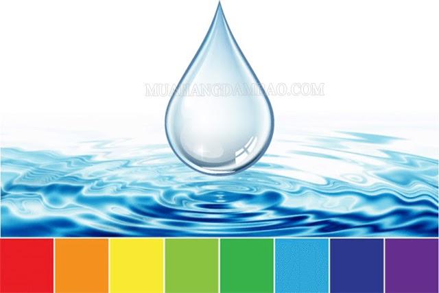 Xác định độ pH của nước