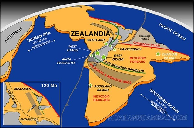 Tranh cãi xoay quanh việc New Zealand thuộc lục địa mới Zealandia
