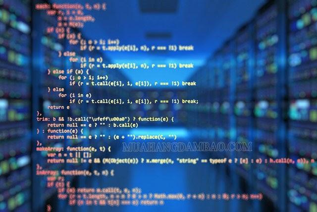 Phát triển thuật toán là kỹ năng căn bản của nhân viên IT