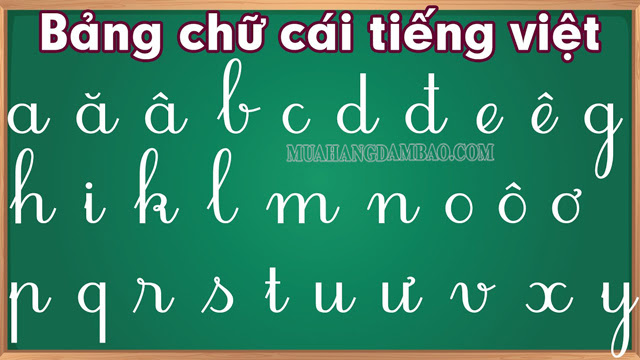 Bảng chữ cái tiếng Việt đầy đủ mới nhất