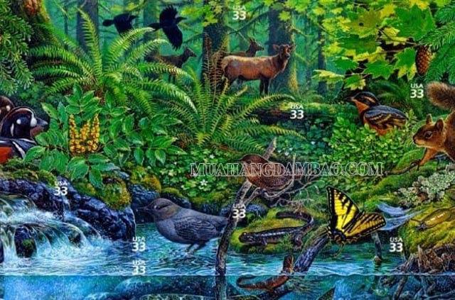 Các nhân tố nào sẽ ảnh hưởng đến hệ sinh thái?
