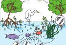 Giới hạn sinh thái là gì?