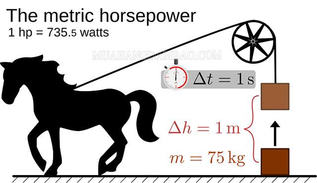 Mã lực còn được gọi là ngựa, 1 mã lực được gọi là 1 ngựa