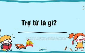 Trợ từ trong tiếng Việt là gì?